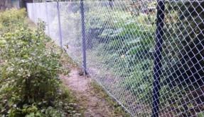 Забор из сетки рабица ЗР-1