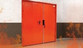 Дверь металлическая огнестойкая ДМ-6