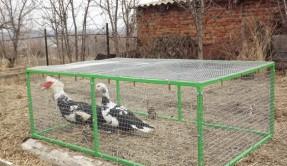 Вольеры для птиц ВС-9